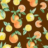 Watercolor summer collection fruits branch, lemons, orange and slice set. Hand painted  fruit on branch with slice isolated on whi royalty free illustration