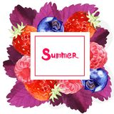 Watercolor summer floral frame illustration. Watercolor summer and spring floral frame illustration with berry isolated on white background Stock Photo