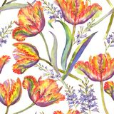 Watercolor summer floral seamless pattern. Hand-drawn watercolor summer floral seamless pattern with vibrant colorful tulips and hyacinth. Fresh bright flowers Royalty Free Illustration