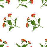 Watercolor summer flowers seamless pattern. Vector vector illustration