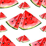 Watercolor summer fruit watermelon pattern. On white background Stock Photos