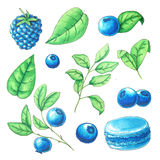 Watercolor summer fruits collection Stock Photo