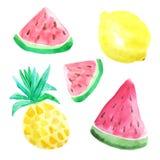 Watercolor summer fruits Royalty Free Stock Image