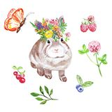 Watercolor summer illustration with cute baby bunny, wildflowers, berries and butterfly, isolated. Hand painted rabbit. Watercolor Bunny. Little woodland animal stock illustration