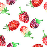 Watercolor summer raspberry pattern. On white background Royalty Free Stock Photography