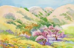 Watercolor summer rural landscape vector illustration Stock Photography
