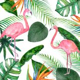 Watercolor summer sale banner of tropical leaves and the pink Flamingo isolated on white background. royalty free illustration