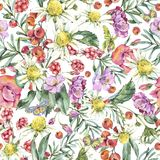 Watercolor Summer Seamless Pattern with Chamomile, Berries, Wildflowers royalty free illustration