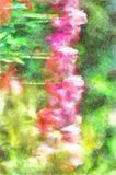 Watercolor Summer Or Spring Day Landscape Amazing Nature Of Pink Tulips Under Sunlight At The Middle Of Royalty Free Stock Photos
