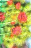 Watercolor Summer Or Spring Day Landscape Amazing Nature Of Red Tulips Under Sunlight At The Middle Of Royalty Free Stock Photo