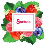 Watercolor summer floral frame illustration. Watercolor summer and spring floral frame illustration with berry and leaves Stock Image