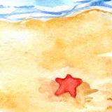 Watercolor summer travel beach sea shore seastar.  Stock Photo