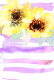 Watercolor sunflowers Stock Photography