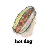Watercolor tasty hotdog Stock Photos