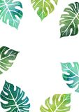 Watercolor template with palm tree leaves Royalty Free Stock Photos