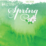 Watercolor texture background.Spring Royalty Free Stock Photos