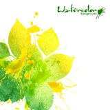 Watercolor texture and splashes green leaves Stock Photos