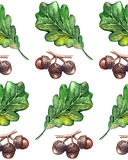 Watercolor three oak green leaf acorn seed seamless pattern background.  Royalty Free Stock Image