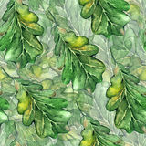 Watercolor three oak green leaf acorn seed seamless pattern background Stock Photo