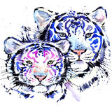 Watercolor tiger illustration Stock Photo