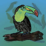 Watercolor toucan bird. Vector illustration Stock Photo