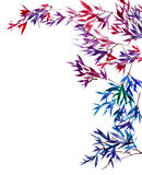 Watercolor tree branches. Watercolor and ink painted branches of tree. Sumi-e oriental traditional painting stock illustration