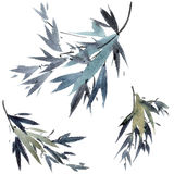Watercolor tree branches Royalty Free Stock Photo