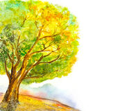 Watercolor tree  nature background Stock Images