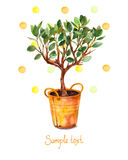 Watercolor tree in pot with watercolor splashes. Vector illustration. Spring time. Stock Image