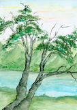 Watercolor tree and river. Hand painted tree next to a river Royalty Free Stock Image