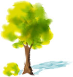 Watercolor tree - vector illustration Stock Photos