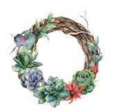 Watercolor tree wreath with cactus and succulent. Hand painted opuntia, echeveria, eucalyptus leaves with succulent royalty free illustration