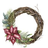 Watercolor tree wreath with Christmas decor. Hand painted tree branch with poinsettia, eucalyptus, mistletoe and vector illustration