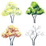 Watercolor trees. Stock Photos