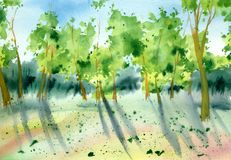 Watercolor trees in sunny day. stock images