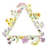 Watercolor triangular frame with medical plants. Stock Photo