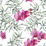 Watercolor tropic pattern with eucalyptus and orchids. Hand painted exotic ornament with branches with leaves isolated Royalty Free Stock Images