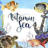 Watercolor tropic sea card with lettering Vitamin Sea. Hand painted tropic fish, old anchor, sea anemones, seaweeds Royalty Free Stock Images