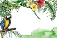 Watercolor tropical banner with exotic leaves, flowers and parrot. Hand painted frame with palm leaves, branches stock illustration