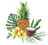 Watercolor tropical bouquet with flowers, leaves and fruit. Hand painted monstera, palm branch, frangipani, pineapple stock illustration