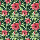 Watercolor tropical bright pattern with hibiskus. Hand painted flowers with palm leaves  on dark blue background Royalty Free Stock Image