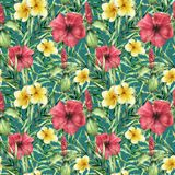 Watercolor tropical bright pattern with plumeria and hibiskus. Hand painted flowers with palm leaves on dark vector illustration