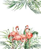 Watercolor tropical card with exotic palm leaves and flamingo. Hand painted floral illustration with banana and coconut Royalty Free Stock Photography