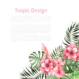 Watercolor tropical card template. Watercolor vintage Tropic design. Card template with watercolor tropical flowers and green leaves. Bright jungle invitation royalty free stock images