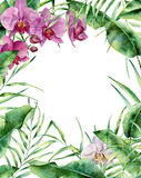 Watercolor tropical floral frame. Hand painted exotic border with palm tree leaves, banana branch and orchids isolated. On white background. For wedding and Stock Image