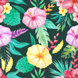Watercolor tropical floral seamless pattern. Seamless pattern with watercolor tropical flowers, leaves and plants with dark backdrop. Hand painted jungle Stock Photography