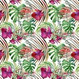 Watercolor tropical floral seamless pattern. hand-drawn wild nature illustration Stock Image