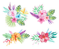 Watercolor tropical flowers, leaves and plants. Set of Watercolor hand painted tropical flowers, leaves and plants. Bright jungle exotic clip art perfect for Stock Photos