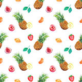Watercolor tropical fruit berry seamless pattern background Stock Photography