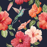 Watercolor tropical hibiscus pattern Royalty Free Stock Photography